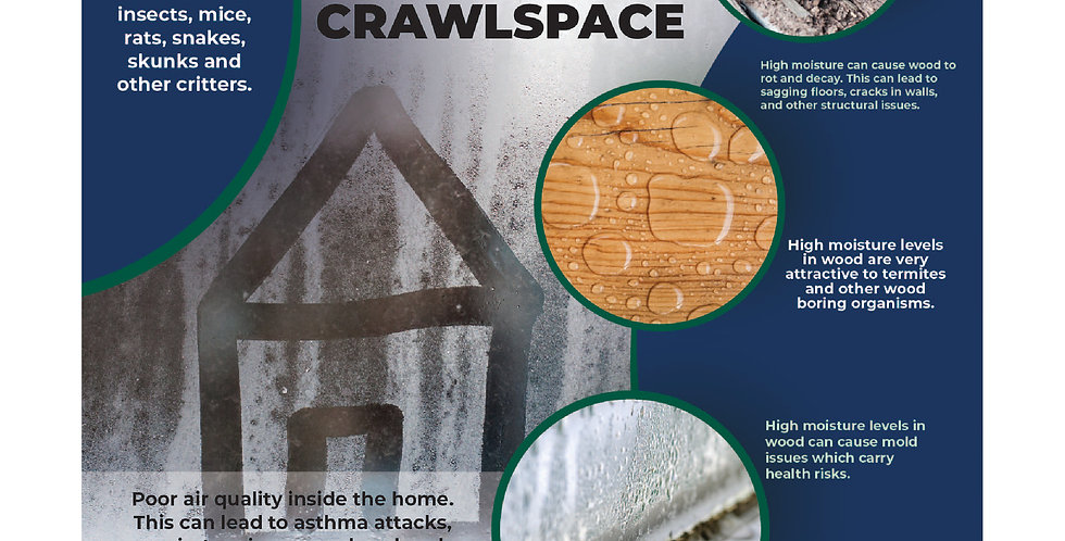Flyer Insert Crawlspace (Sold In Quantities of 1,000 or 2500)