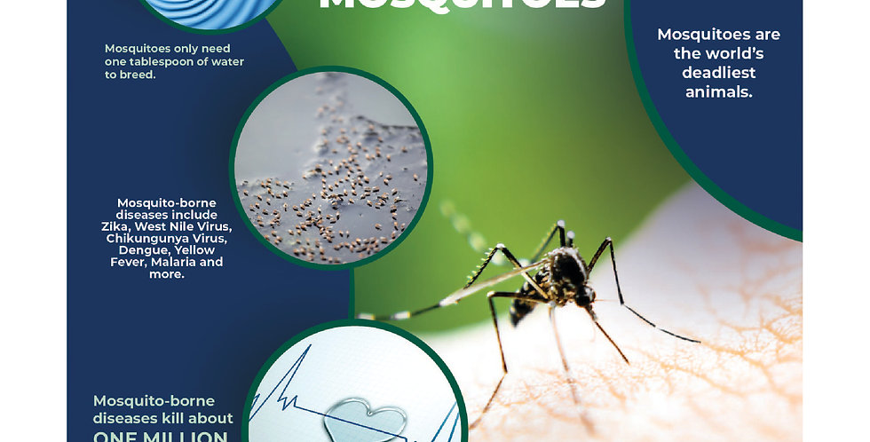 Flyer Insert Mosquitos - (Sold In Quantities of 1,000 or 2500)