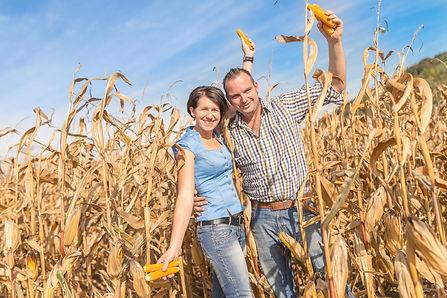 Lisi & Andy im Gugaruz Maisfeld im Ennstal