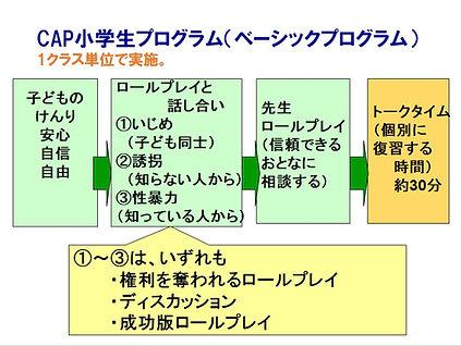 sap_cap2.jpg