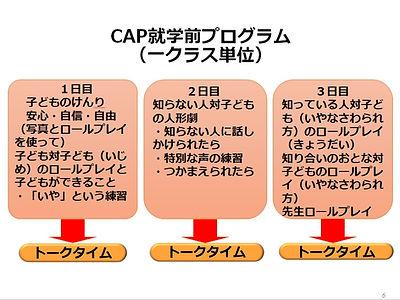 sap_cap3.jpg
