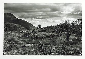Richard Long, 1978,Circle in Africa, Land Art