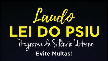 LEI DO PSIU.jpg
