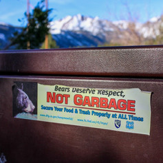 Bear-Proofing for the Backcountry
