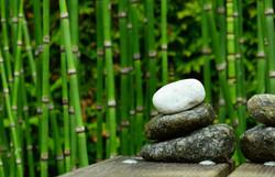 Bambus Viskosefaser