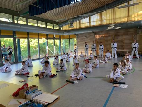 Ingersheimer Taekwondo-Schule bietet wieder ein Online-Training an !