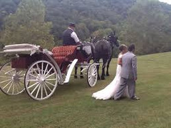 Four Star Villge Wedding Carrage