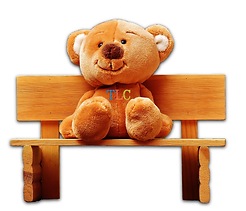 BearBench_New.png