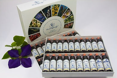 bach-flower-therapy-1543107_640.jpg