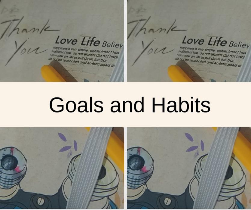 Goals and Habits