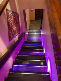 Stairs Purple