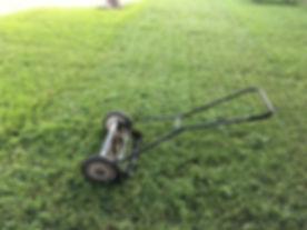 lawn-1812944__340.jpg