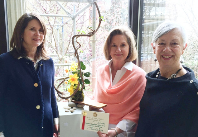 Hillside Garden Club brings home a red ribbon at the 2018 Daffodil Show