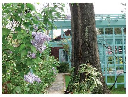 Restoration of the Anne Spencer House Garden by the Hillside Garden Club