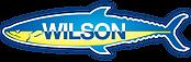 Wilson image.png