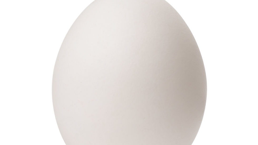 Eier Grösse 60g+
