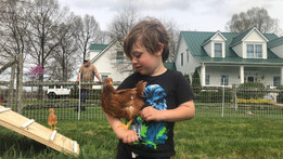 Mason holding one of our egg layers