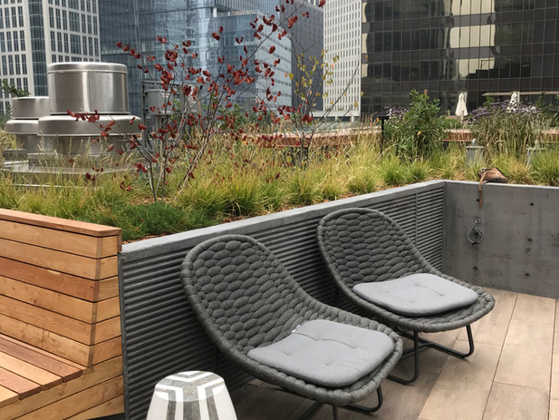 SOMA outdoor lounge
