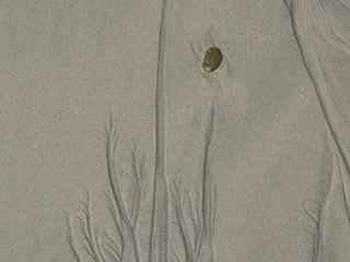 sandpattern5.JPG
