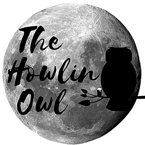 THE HOWLIN OWL BAR Lake Worth.png