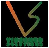 VS_Logo new.png