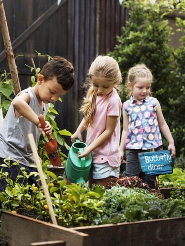 庭の子供たち