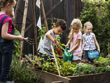 The Rewards of Gardening with Toddlers