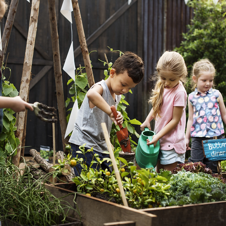 Nature-Based Learning and the Outdoor Classroom