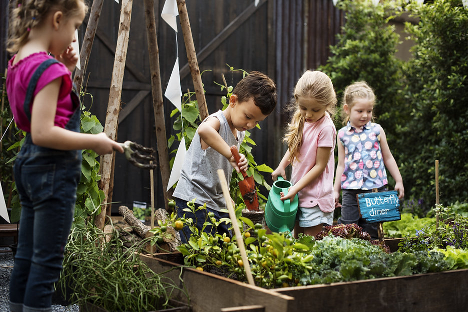 Children in the allotment on outing with childminders The Wonder Years Bromley
