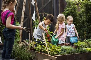 Children's Garden and Outdoor Classroom