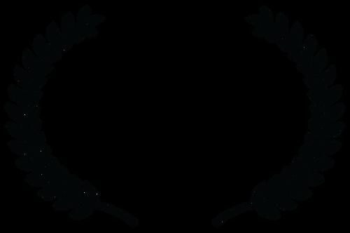 AUDIENCE AWARD - UICA Open Projector Nig