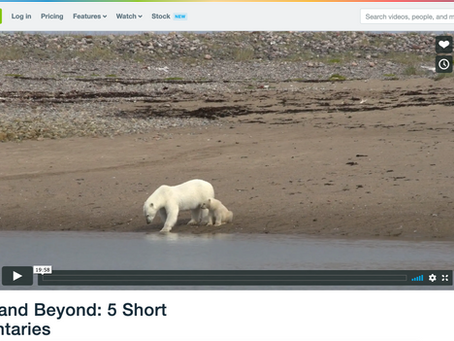 Arviat and Beyond: 5 Short Documentaries