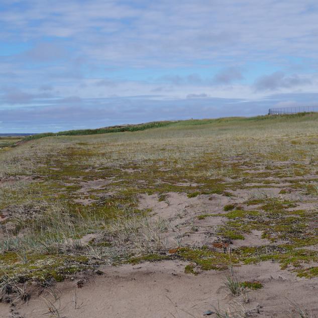 Arviat Landscape