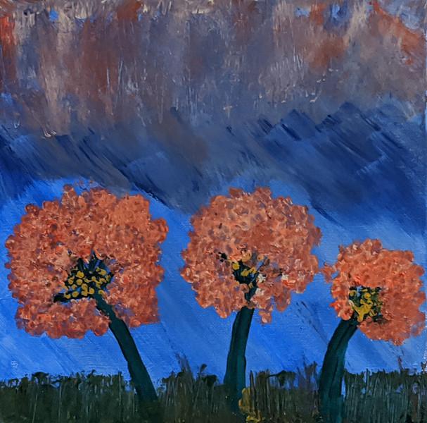 trio of coral trees.jpg