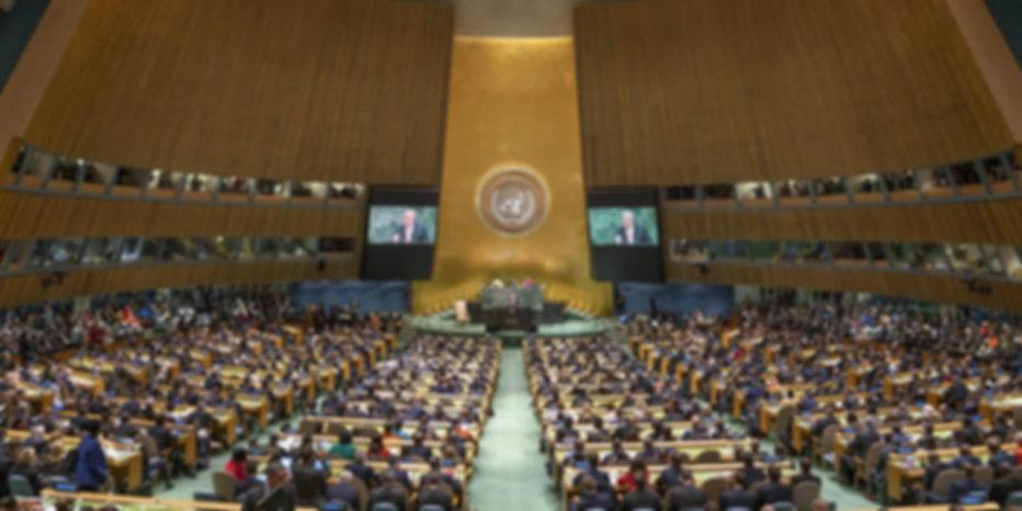 UN General Assembly 2aba.jpg