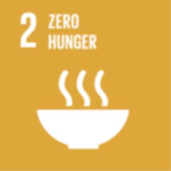 WORLD FOOD DAY SDG GOAL 2 ZERO HUNGER.jp