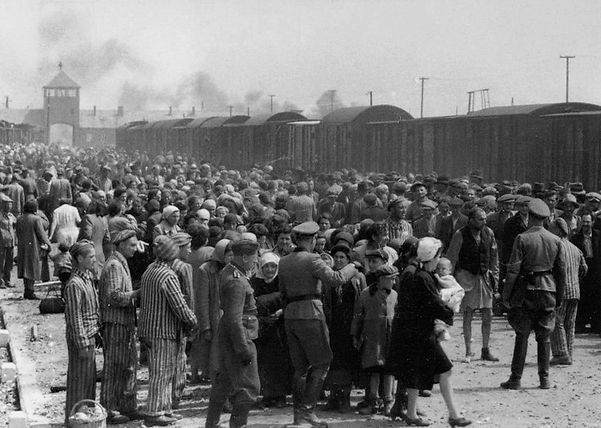The Holocaust Selection_Birkenau_ramp.jp