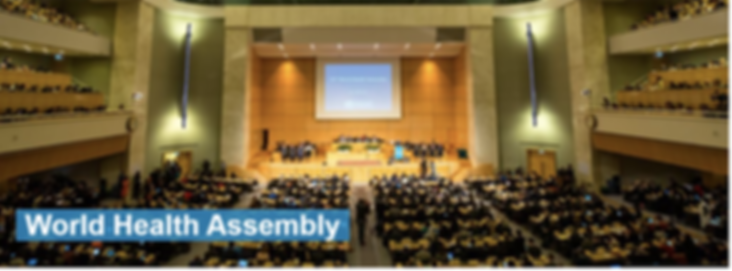 WHO - WORLD HEALTH ASSEMBLY 1a.png