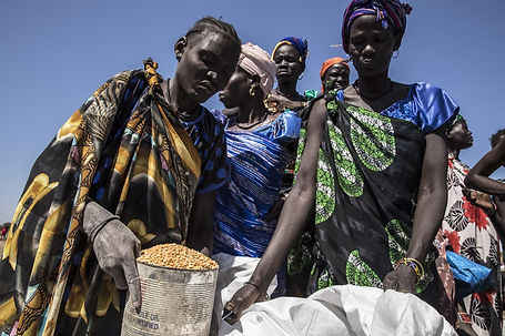 WFP WORLD FOOD PROGRAMME 3ab.jpeg
