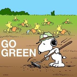 GO GREEN peanuts-comics-peanuts-snoopy.j