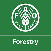 FAO FOREST LOGO.jpg