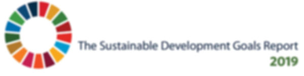 SDG GOALS REPORT 2019-header.jpg