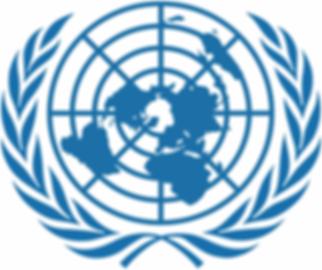UNITED NATIONS LOGO 2b.png