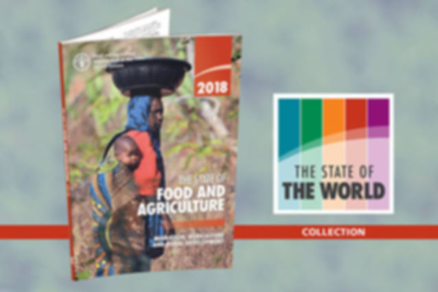FAO STATE OF FOOD AND AGRICULTURE 2018 1
