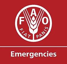 FAO EMERGENCIES LOGO.jpg