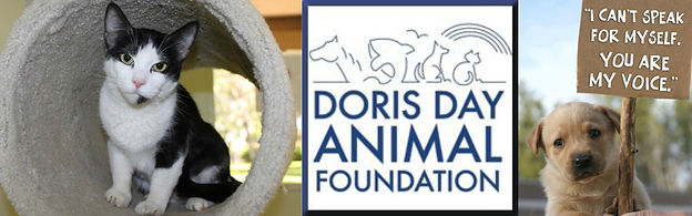 DORIS DAY ANIMAL FOUNDATION 1.jpg