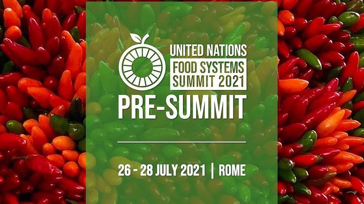 UN PRE FOOD SYSTEMS SUMMIT 4a.jpg