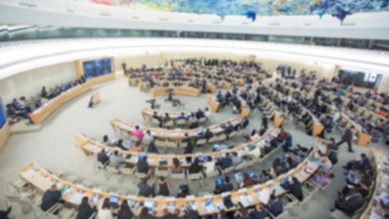 UN Human Rights Council.jpg