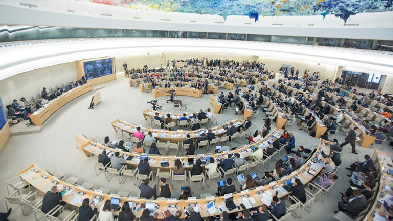 UN Human Rights Council.jpg