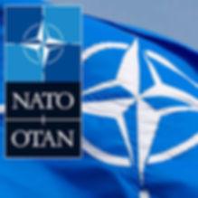NATO LOGO 7ab.jpg